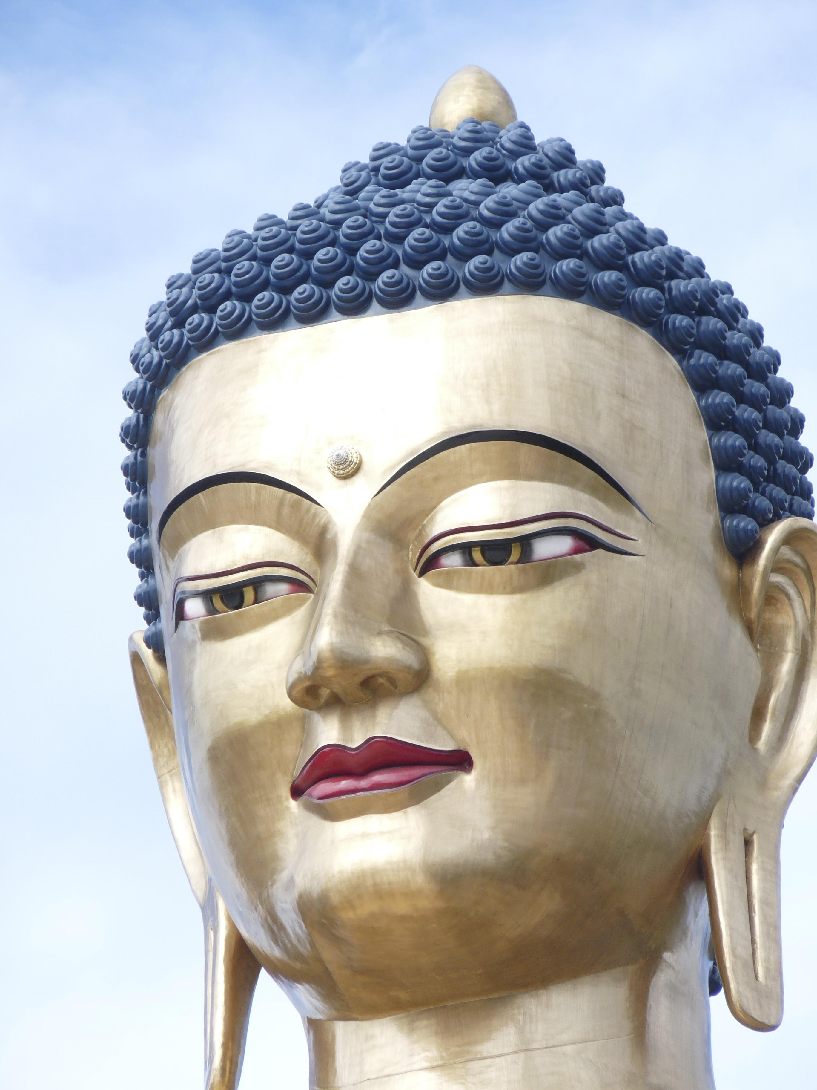 """""""El objetivo de la meditación es experimentar nuestro ser, más allá de la mente conceptual"""""""